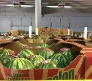 Borderlands Produce Rescue Warehouse